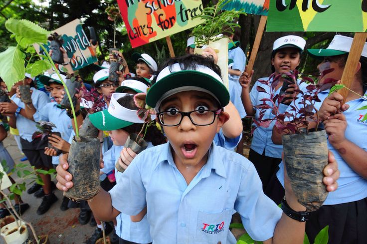 Indian school childrens holds saplings, placards and shouts slogans 'Save Trees' during a rally to mark the World Environment Day in Bangalore, India, 05 June 2014. The World Environment Day is observed annually on 05 June, the theme for this year focuses on 'Small Islands and Climate Change'.