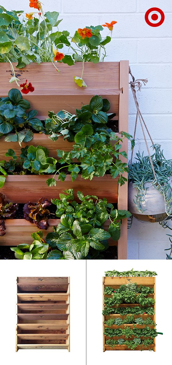 Plant flowers and succulents for extra pops