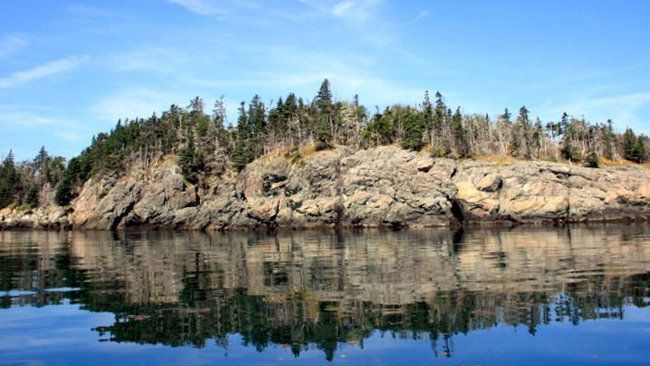 You can own a private island in N.B. for just $850,000