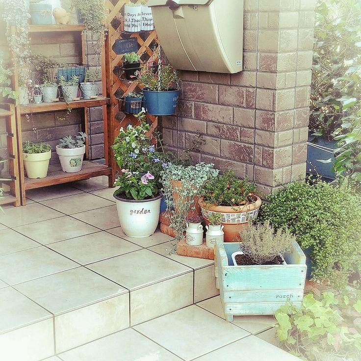 多肉植物×玄関ポーチのインテリア実例 | RoomClip (ルームクリップ) Entrance/観葉植物/ダイソー/玄関/ガーデニング/ガーデン/多肉植物/