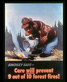 how cute is vintage Smokey the Bear?