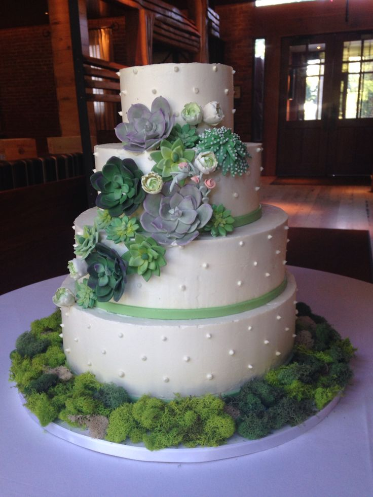 wedding cakes northern new jersey%0A Succulents buttercream wedding cake delivered to Natirar in Gladstone  NJ
