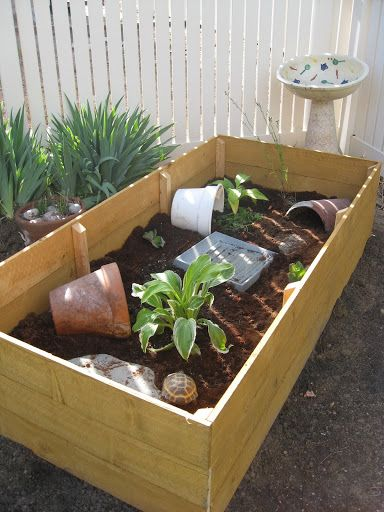 17 best images about tortoise stuff on pinterest garden for Habitat container