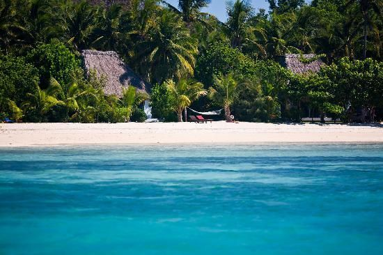 Navutu Stars Fiji Hotel & Resort THIS PLACE HAS THE BEST FOOD + Reviews $500 a night all inclusive