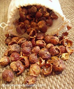 how to make shampoo from soap nuts