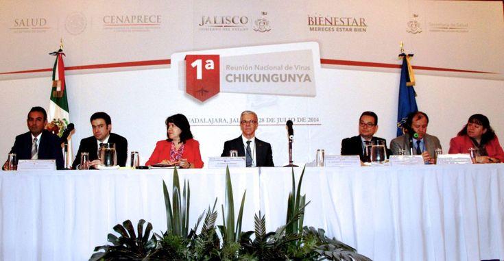 Primera Reunión Nacional sobre el Virus del Chikungunya - http://plenilunia.com/prevencion/primera-reunion-nacional-sobre-el-virus-del-chikungunya/29535/