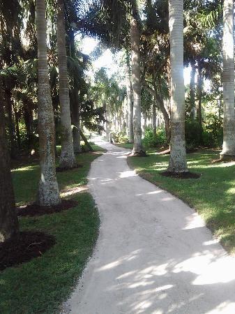 143 best images about fort pierce memories on pinterest - Mckee botanical gardens vero beach ...