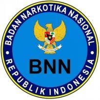 Badan Narkotika Nasional Logo. Get this logo in Vector format from https://logovectors.net/badan-narkotika-nasional/