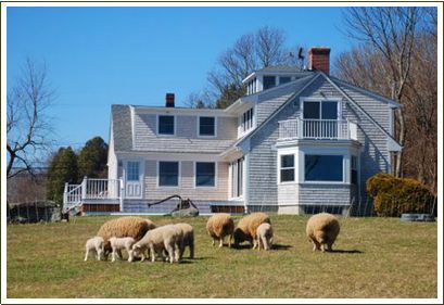 Stonehaven Family Farms, Westport, MA