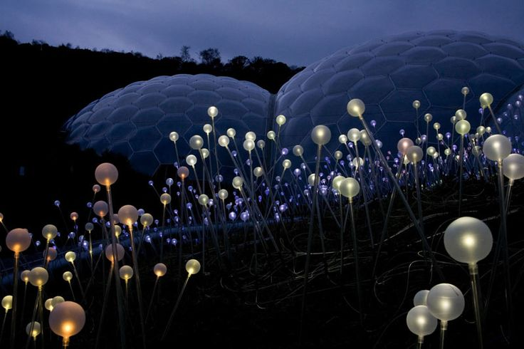 The Field of Light / Eden Project / Bruce Munro