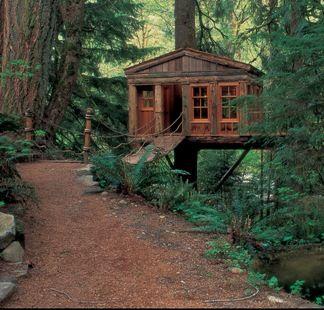 Treehouses | New Treehouses Of The World | Homes Slideshow | Green Living