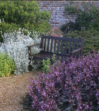 Mediterranean Garden  Drought-tolerant herbs lend a Mediterranean feel to this garden.