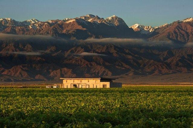Bodega de Mendoza. http://rentalugar.com/blog/ruta-nacional-40-que-hacer-en-cuyo/