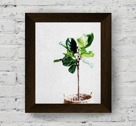 foglie di banano stampa arte della parete foglia Palma