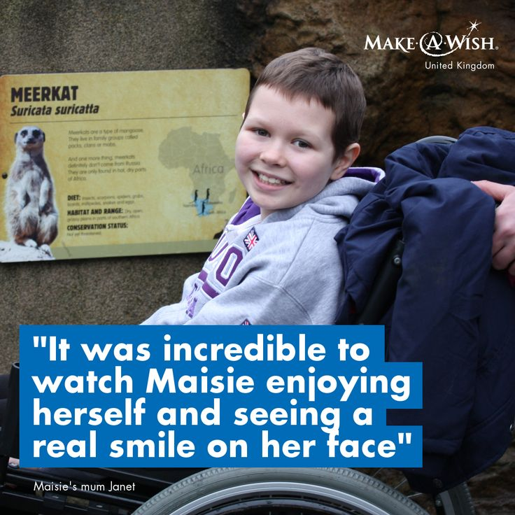 Maisie had a touching wish - to visit her big brother in London for an animal-themed weekend :)