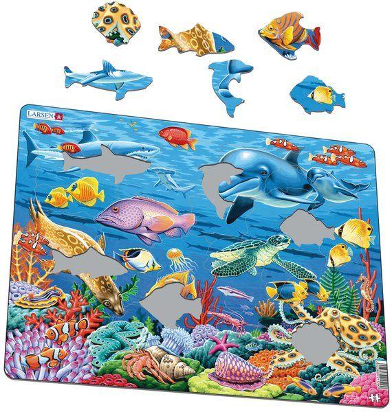 FH29 Koralový útes