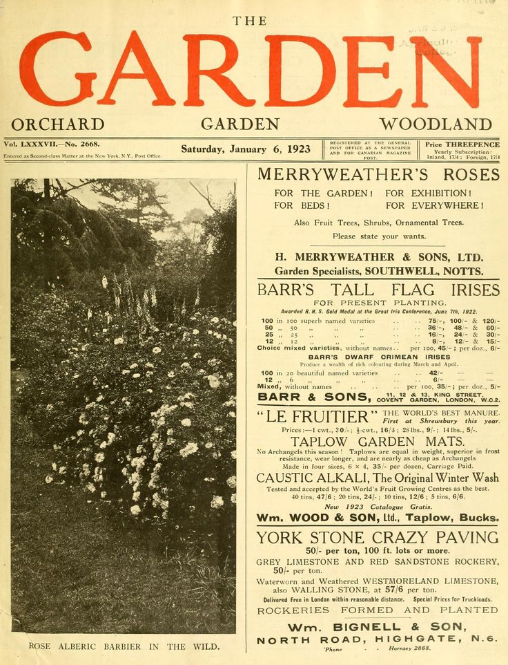 The Garden : an illustrated weekly journal of g...