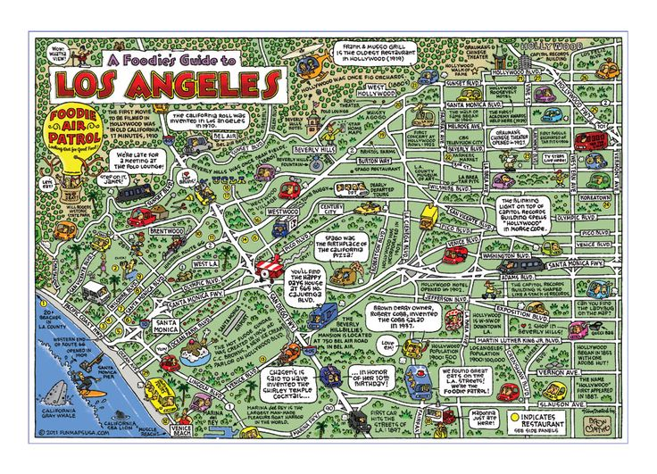 Best Food Maps Images On Pinterest Food Networktrisha World - Fun map of the us