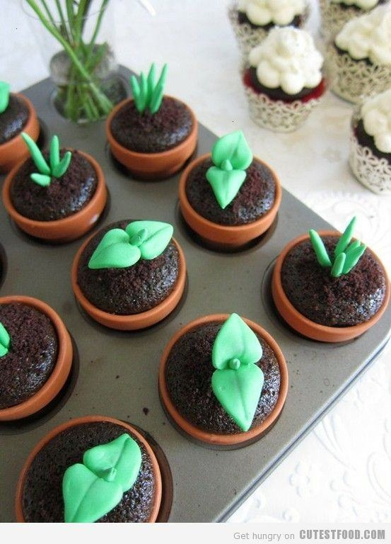 SPROUT CUPCAKES...PERFECT FOR THOSE WHO DONT LIKE A TON OF FROSTING
