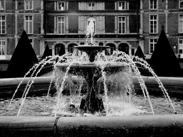 Eu - La fontaine du Château d'Eu (Seine-Maritime - 76260) [2016] (Photo de Didier Desmet)
