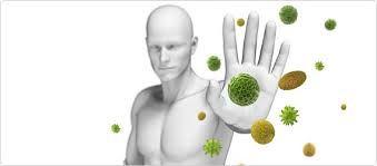 ARGININA a moringa tem! É um aminoácido essencial, importante na manutenção da resposta imunológica e cicatrização de feridas.
