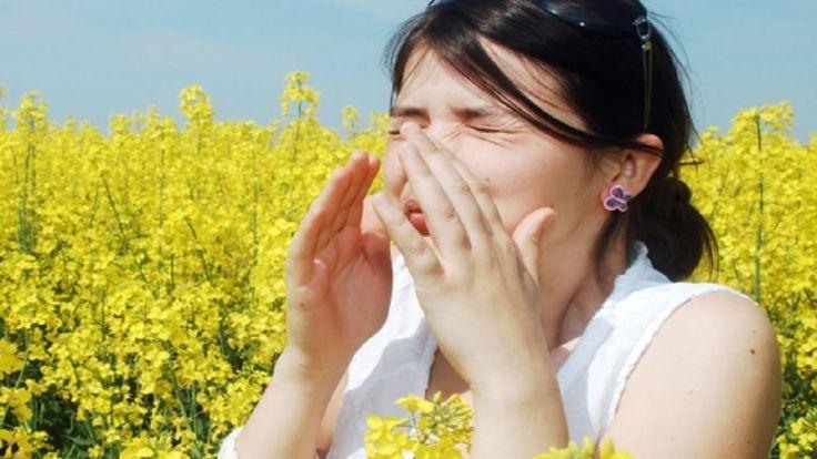 Народные средства от аллергии - 5 рецептов » Женский Мир