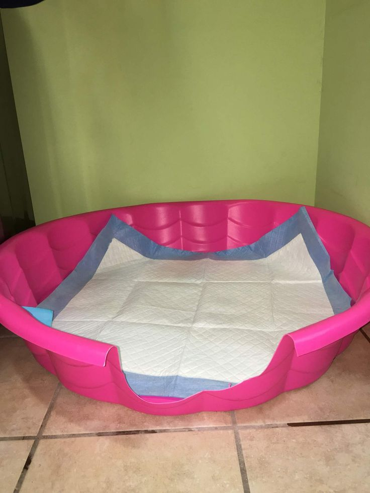 Use a kid pool to prevent accidents from the puppy pad from getting on the floor. To clean the pool just take it outside rinse with bleach water and let dry and it's ready to be used again!