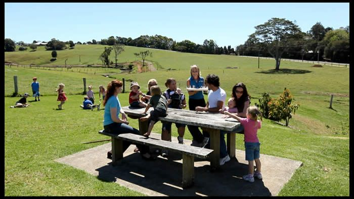 Maleny Dairy - tours