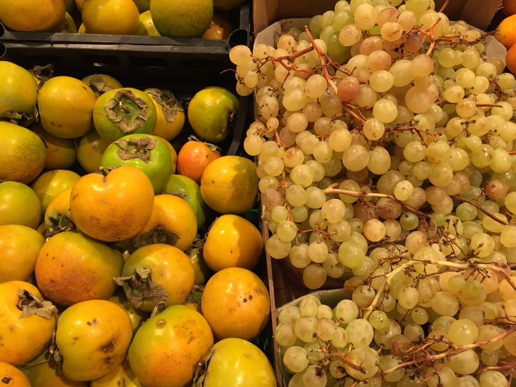 Persimmons and grapes at the market in Rome. This is fall!