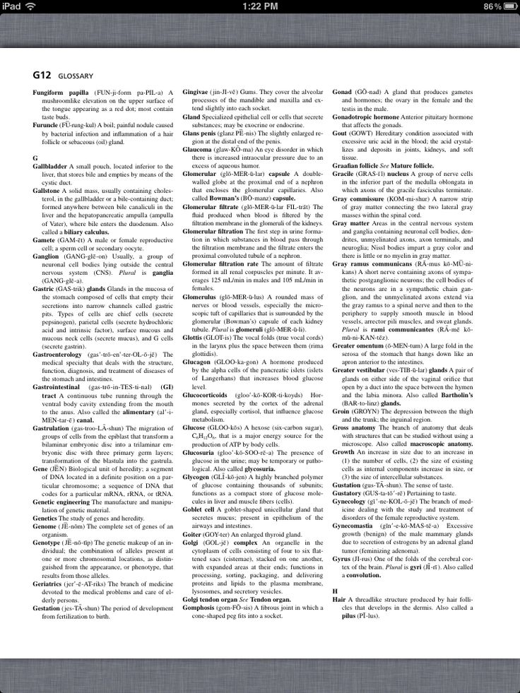 anatomy ch 1 Chapter 1: an introduction to the human body copyright 2009, john wiley & sons, inc overview meaning of anatomy and physiology organization of the human body and properties regulation of internal environment basic vocabulary copyright 2009, john wiley & sons, inc anatomy and physiology defined.