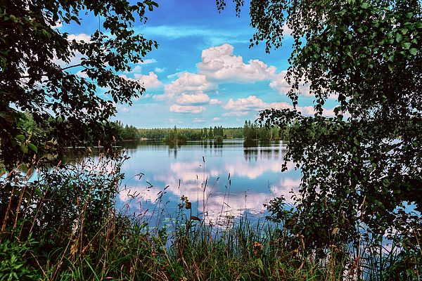 George Westermak Photograph - beautiful forest lake in Sunny summer day by George Westermak#GeorgeWestermakFineArtPhotography #ArtForHome #FineArtPrints #travel #landscape #nature