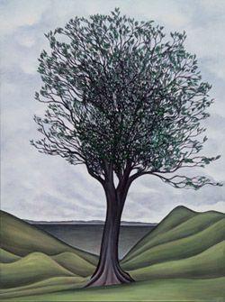 The Karaka Tree
