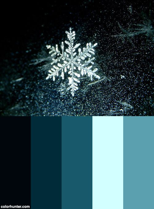Snowflake-017 Color Scheme from colorhunter.com