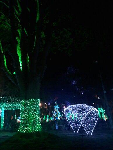 Navidad en Bogotá 2015