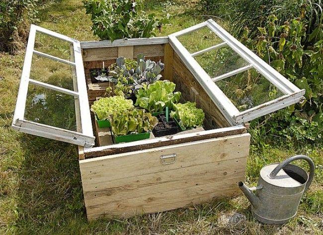 Idée récup' pour le jardin. Un châssis bricolé avec une vieille fenêtre.  Fermé, voici un serre pour protéger les jeunes plants...