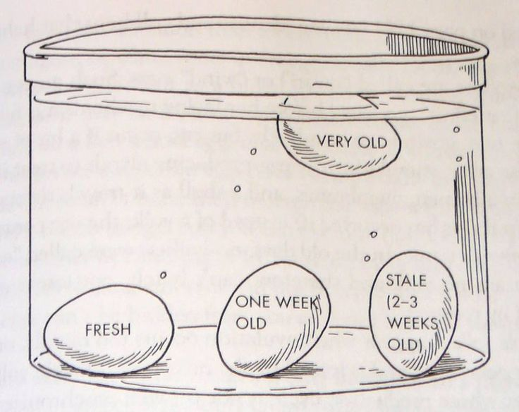 Test your eggs for freshness