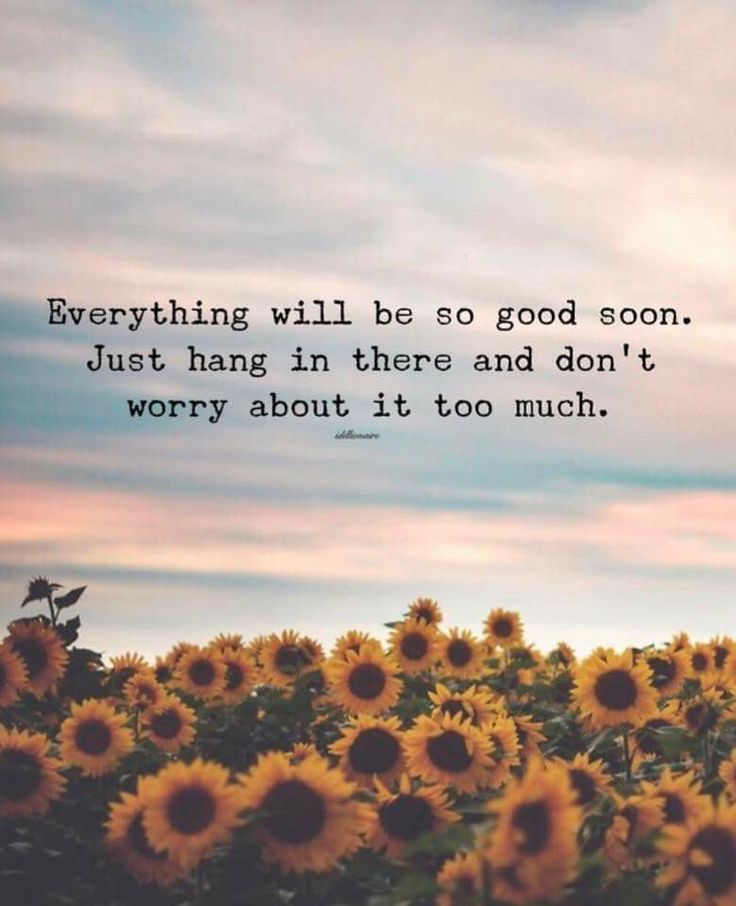 Don't worry about IT at ALL.