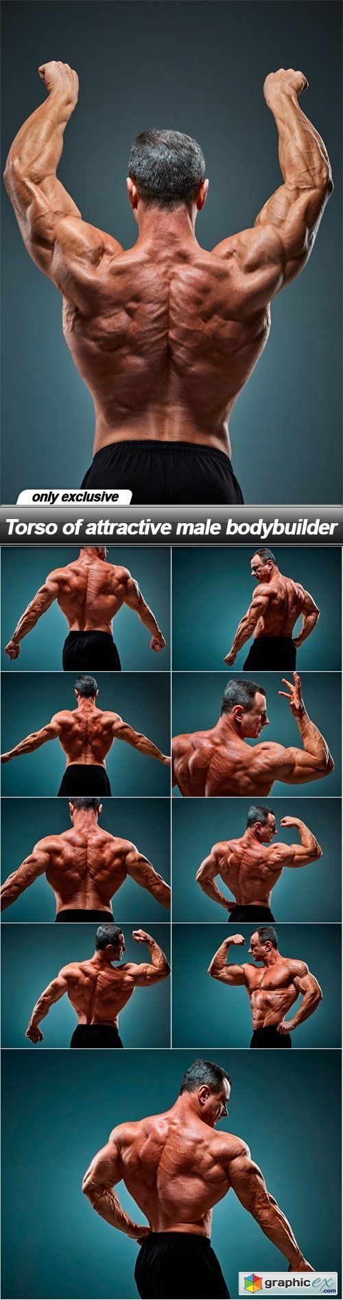 Torso of attractive male bodybuilder  10 UHQ JPEG  stock images