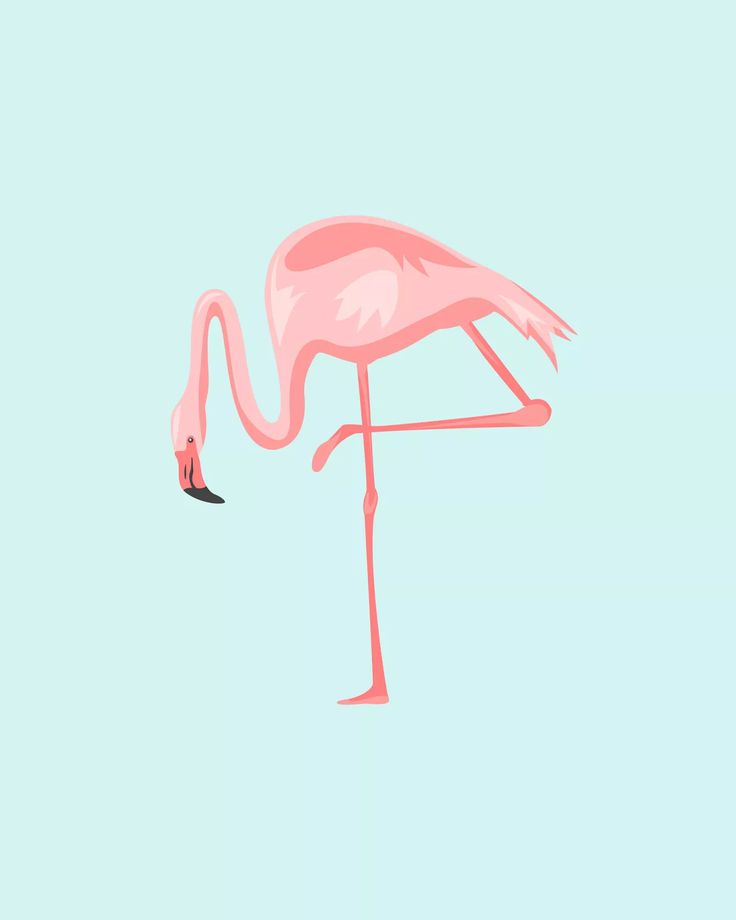 OhSoLovely-Flamingos-02
