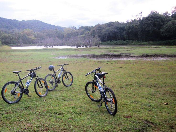 Ride the adventurous wheels!  #vivantabytaj #vivanta #Madikeri #Coorg #Adventure #Thrill #Cycling #hills #nature