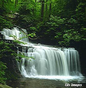 I love the waterfalls in the Smoky Mountains!! Cant wait to go back,