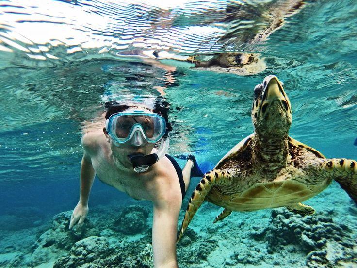 Anton:): Urlaub auf Bali