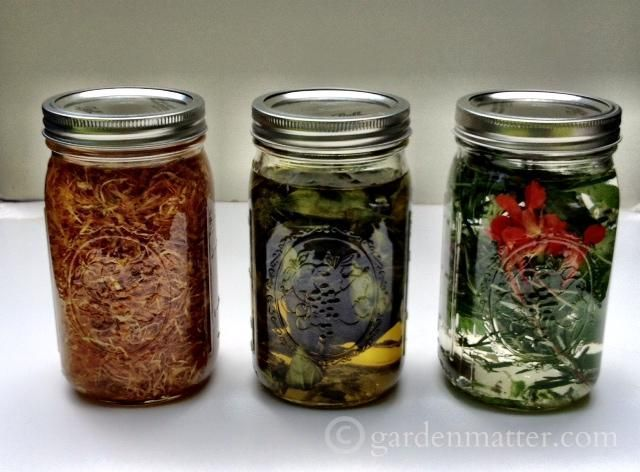 Learn how to make herbal oils and herbal vinegar to use in cooking and to make your own beauty products. Also makes a great holiday gift. www.gardenmatter.com