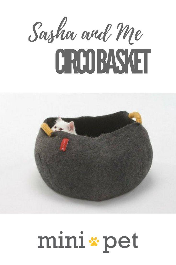 """From our friends at Sasha and Me, we present the all natural, hand made, super cosy Circo Basket. For cats and small dogs who love to feel """"enclosed"""", on cold winter nights, or just...because!  Also works great as a toy storage basket, or for blankets, or, anything, really!"""