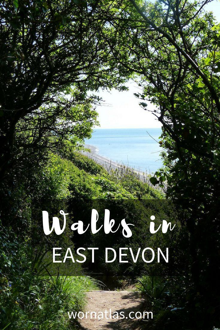 Walks in East Devon