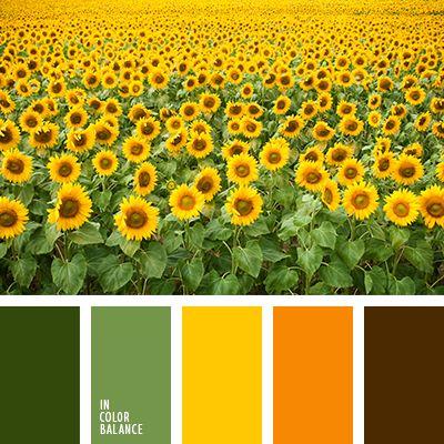 грязно-коричневый, желтый, зеленый, насыщенный оранжевый, оттенки оранжевого, подбор цвета для дома, почти черный цвет, темно-оранжевый, теплые оттенки, теплый желтый, теплый оранжевый, цвет листьев, цвета Италии.