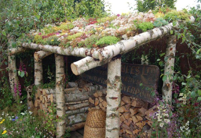 "This site has dozens of beautiful photos of ""living roofs"" with info on creating one of your own!"