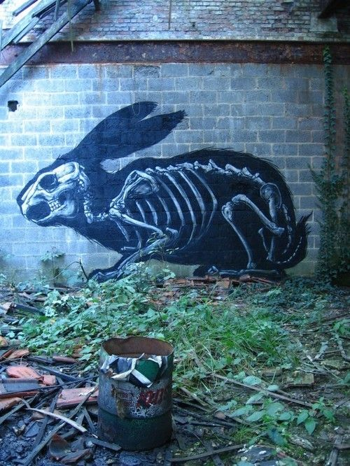 rabbit graffiti-- you don't want this to come after you.: Wall Art, Street Artists, Outdoor Art, Bunnies Art, Funny Humor, Animal Anatomy, Peter Rabbit, Funny Stuff, Streetart