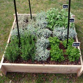Bac à herbes aromatiques qui a du style !