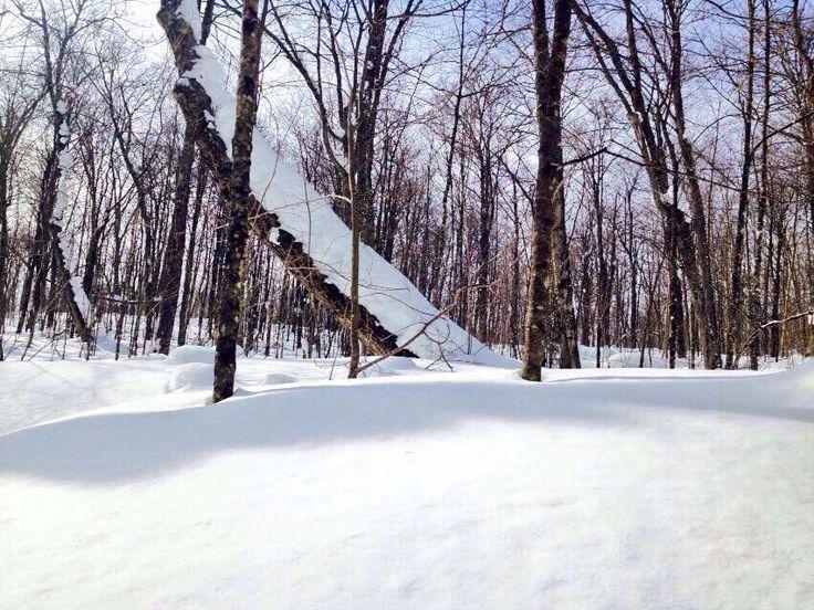 Beautiful. Winter camping